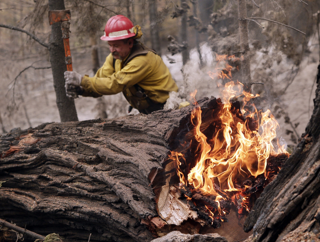 Tracy Porter, of Paradise, Calif., uses an axe to fragment a burning tree damaged by the Eiler Fire on Monday, Aug. 4, 2014, in the Lassen National Park near Hat Creek, Calif. Firefighters were focusing on two wildfires near each other in Northern California that have burned through more than 100 square miles of terrain. (AP Photo/Marcio Jose Sanchez)