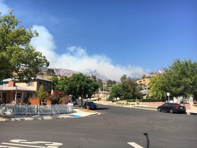A brush fire approaches Viewcrest Drive in the Burbank Hills on Wednesday, June 28, 2017.