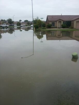 Jose Duarte of