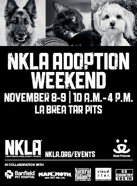 NKLA - No Kill Los Angeles Adoption Weekend 2014