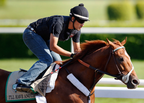 144th Belmont Stakes - Preview
