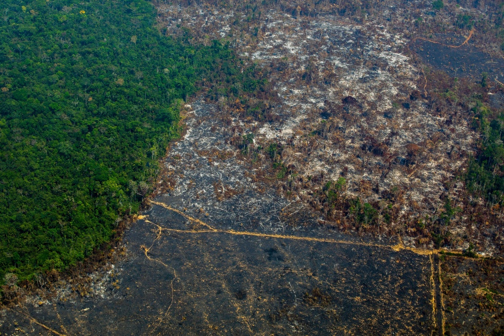 Aerial view of deforestation in Nascentes da Serra do Cachimbo Biological Reserve in Altamira, Para state, Brazil, in the Amazon basin, on August 28, 2019
