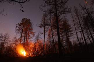 File photo of a burning stump in the San Gabriel Mountains on September 16, 2009 in the Angeles National Forest, northeast of Los Angeles, Calif.