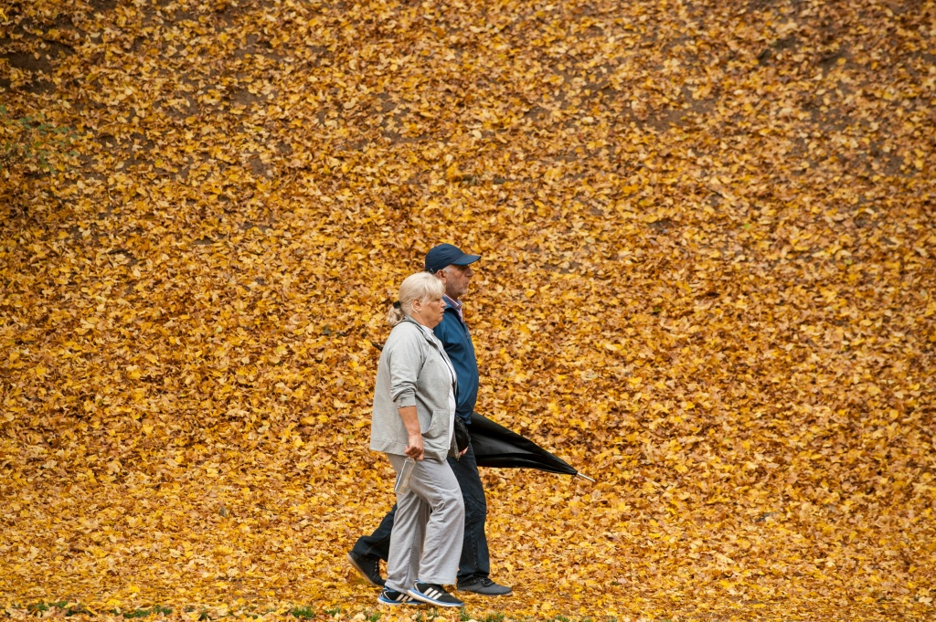 A couple hold hands as they walk through a park, covered of fallen yellow leaves, near Pristina, Kosovo on October 23, 2017.
