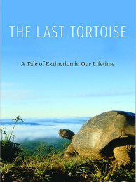 Will tortoises disappear altogether? Craig Stanford details the extinction threat.