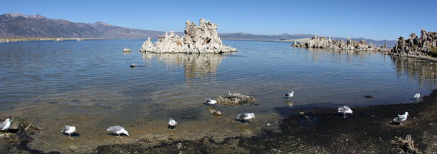 The Mono Lake is pictured September 12, 2007 in Lee Vining, California.