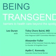 Being Transgender: barriers to healthcare beyond the spotlight