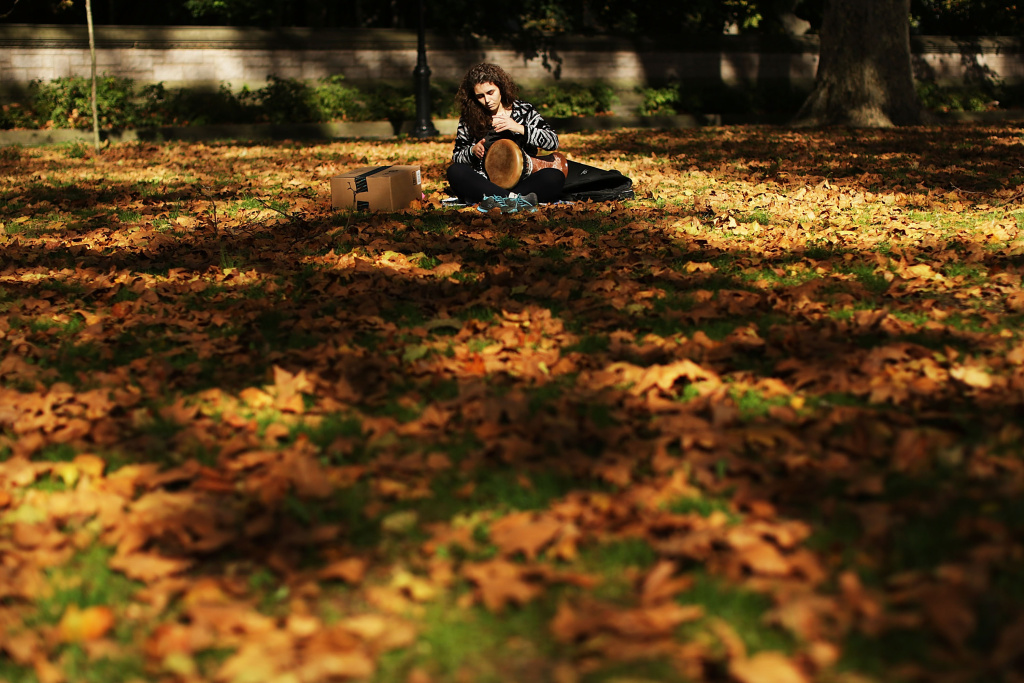 A woman plays a drum surrounded by fallen leaves as autumn foliage fills the trees of Prospect Park on October 30, 2015 in the Brooklyn borough of New York City.