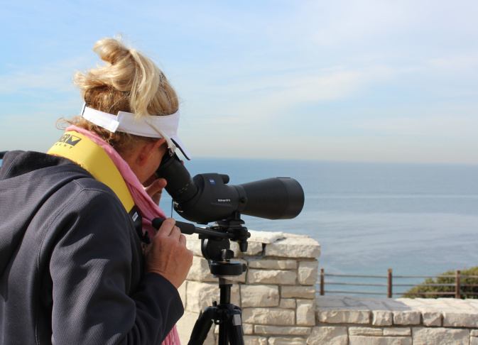 Joyce Daniels looks for whales through a spotting scope on January 7, 2014. Daniels has been counting gray whales with the American Cetacean Society for 20 years.