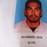 Alex Alvarado
