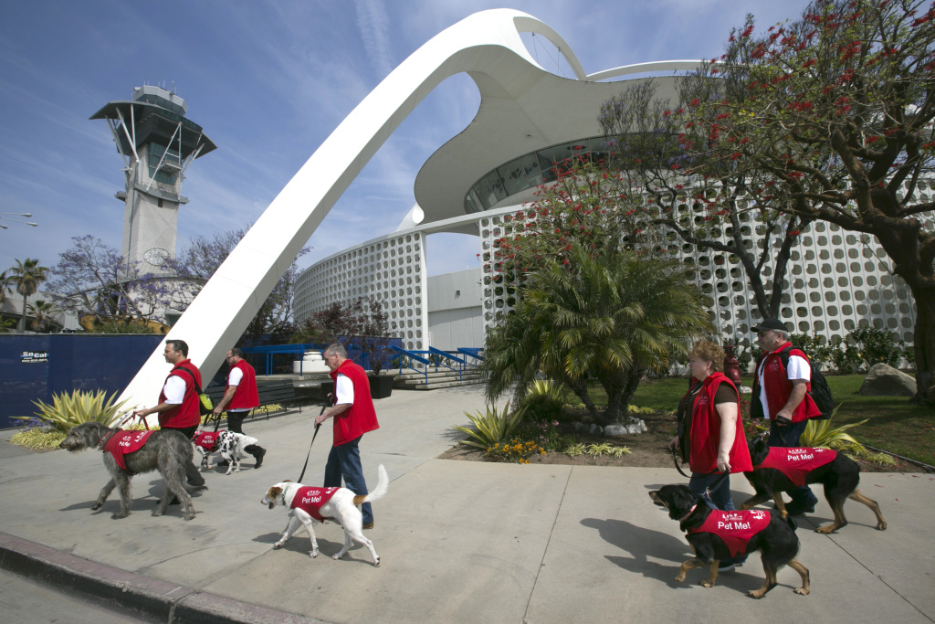 In this photo taken Tuesday, May 21, 2013, Volunteers with Pets Unstressing Passengers (PUPs) walk past the spider legged Theme Building, at the Los Angeles International Airport. The dogs are intended to take the stress out of travel: the crowds, long lines and terrorism concerns.