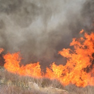 Fire rages on a hillside south of Banning, California on August 8, 2013
