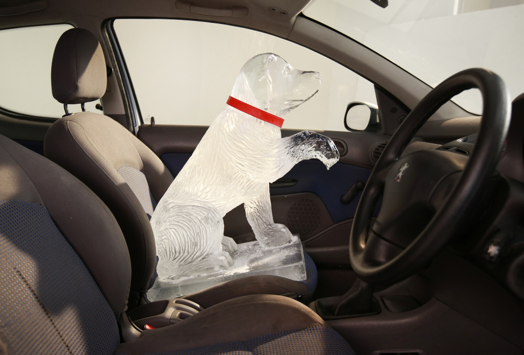 An ice sculpture is placed in a vehicle to warn of the dangers of leaving a dog in a hot car on April 9, 2014 in London, England.