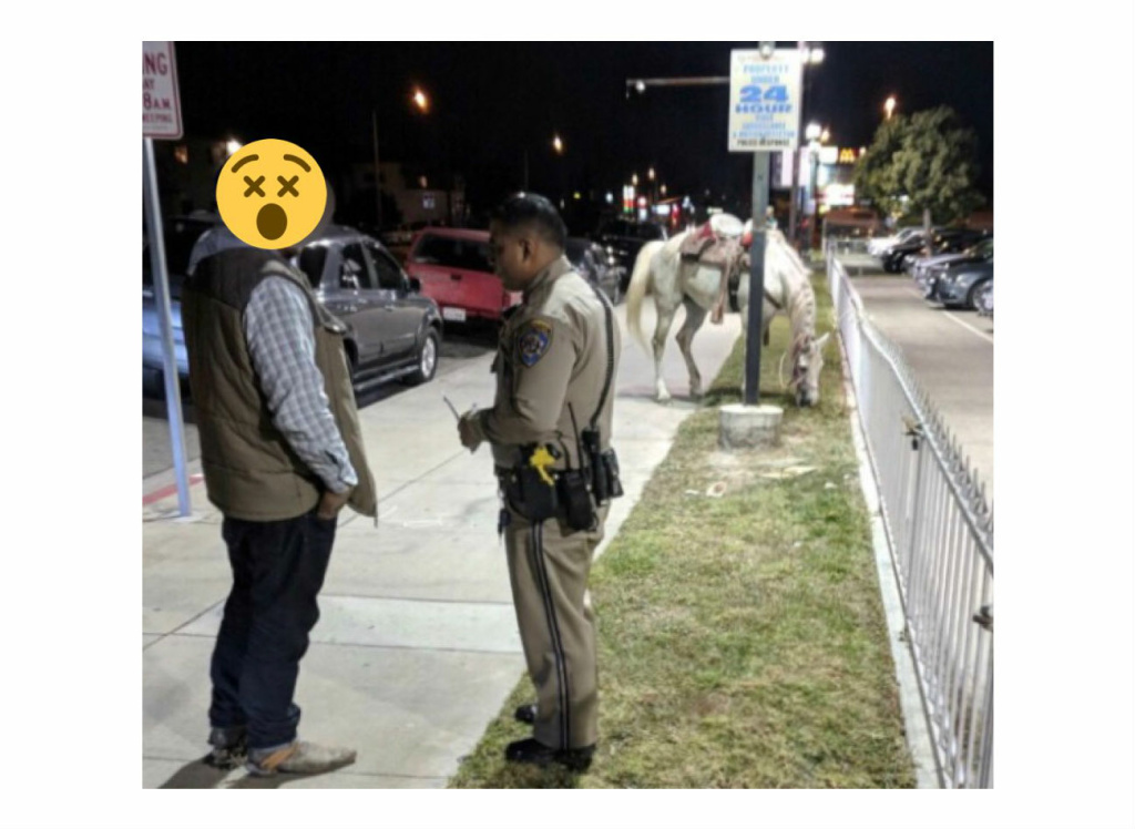 A man is given a sobriety test on Saturday, February 24, 2018, after he was spotted riding a horse on the 91 freeway in Long Beach.