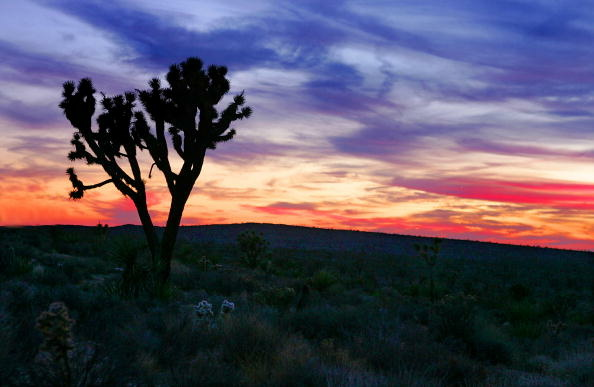 The Cadiz Valley water project would pump groundwater from an aquifer in the Mojave Desert.
