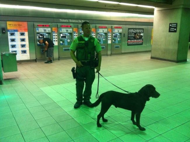 Deputies watch to make sure Metro riders use their TAP cards, Wednesday, June 19, 2013.