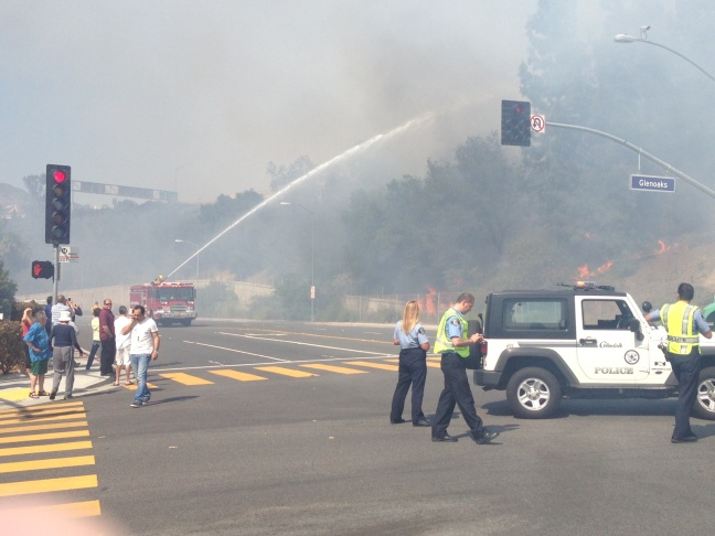 Firefighters battle a brush fire in Glendale, Friday, May 3, 2013.