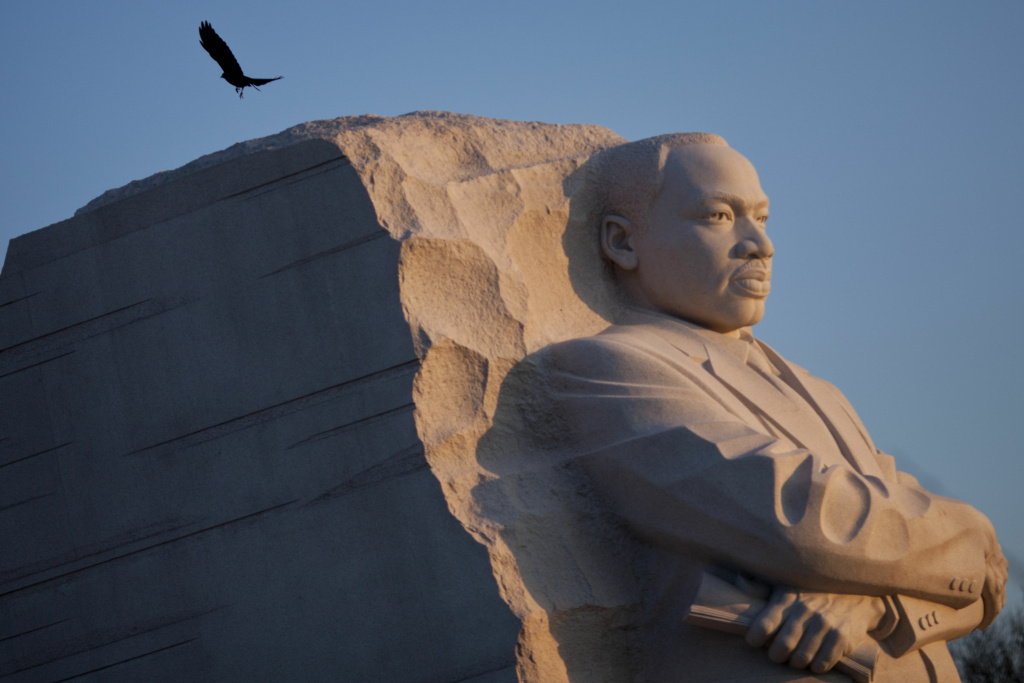 A bird flies from the Martin Luther King Jr. memorial on the National Mall January 15, 2012 in Washington, DC.