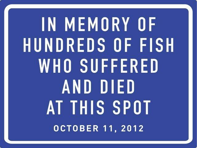 peta fish memorial