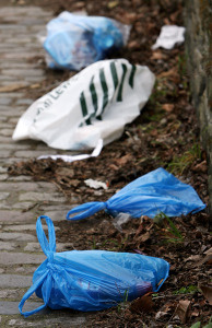 Plastic bags have become a major pollutant around the world.