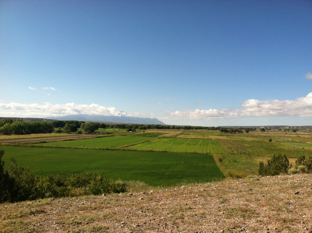 The new irrigation system helps the Santo Domingo Pueblo's water supply go farther. More than 300 acres of farmland that used to lay fallow is now supporting a variety of crops.