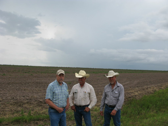 For the first time in their farm's history, brothers G.W. (from left), Derril and Wesley Franzen can't plant rice on their land because the drought forced Texas to cut off their agriculture water.