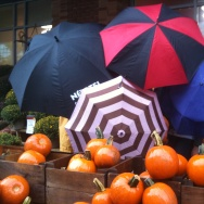 Pumpkins in the rain