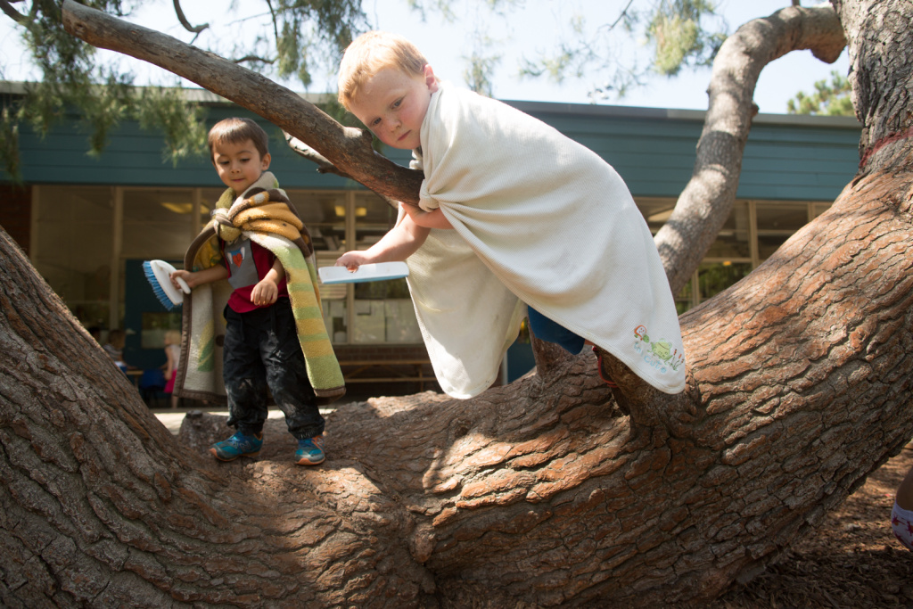 Aiden and Milo play in a tree at the Child Educational Center.