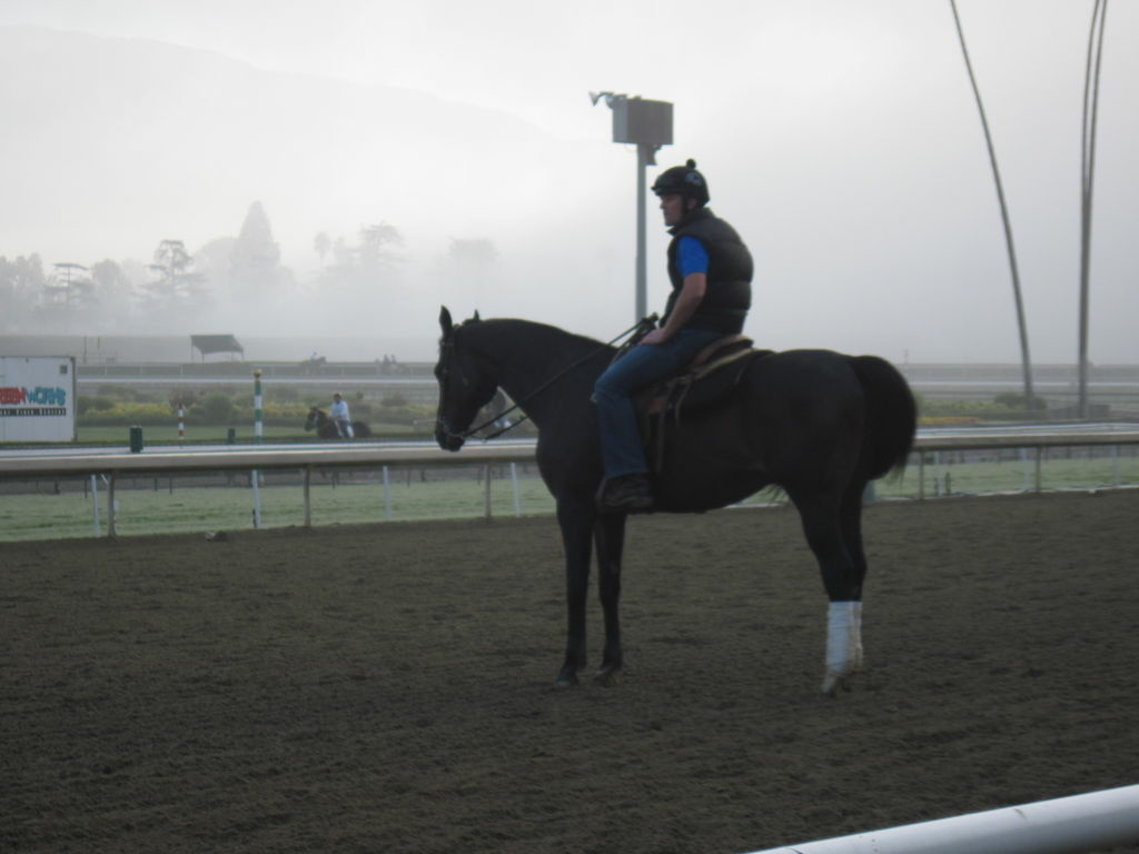 (File photo) A rider rests with his horse on the track at Santa Anita Park.