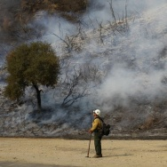 Williams Fire Burns In The Angeles National Forest