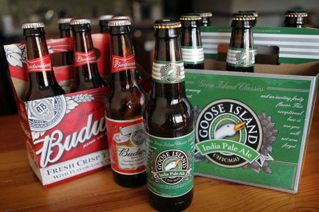 Goose Island's India Pale Ale and Budweiser beer