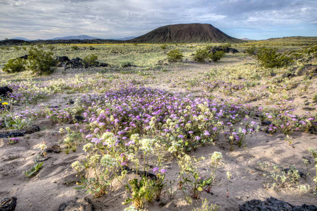 Amboy Crater is an extinct cinder cone volcano located along Route 66 in the Mojave Trails National Monument, which is under review by the Trump Administration.