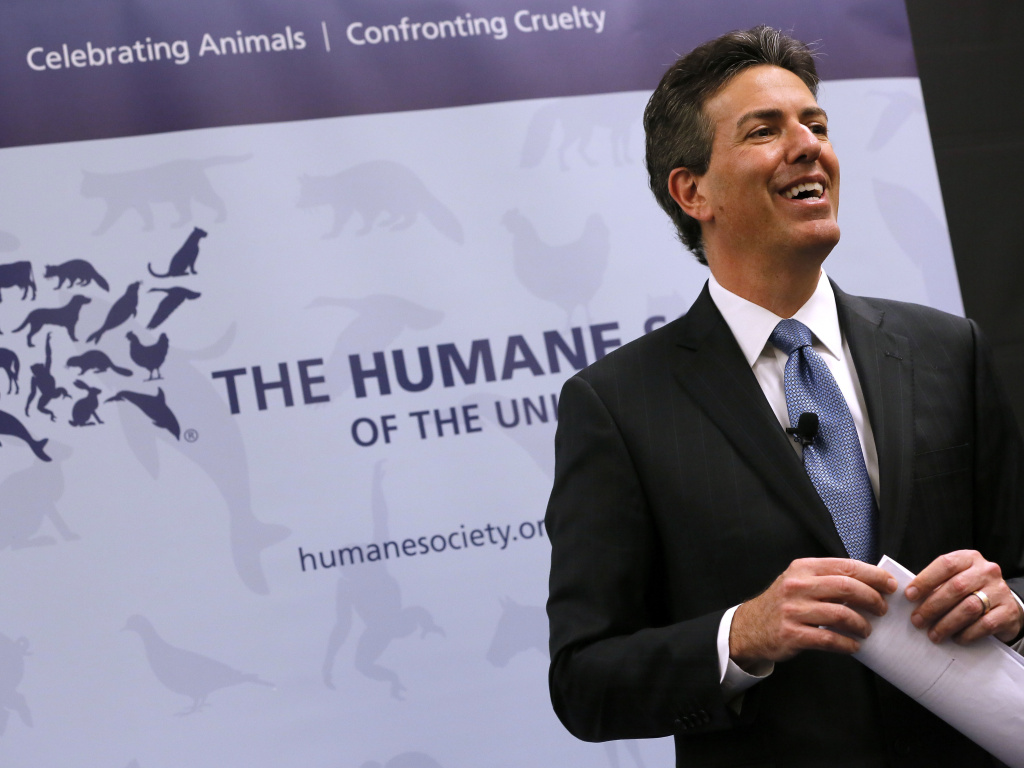 Wayne Pacelle, former CEO of the Humane Society of the United States, at a 2015 news conference.