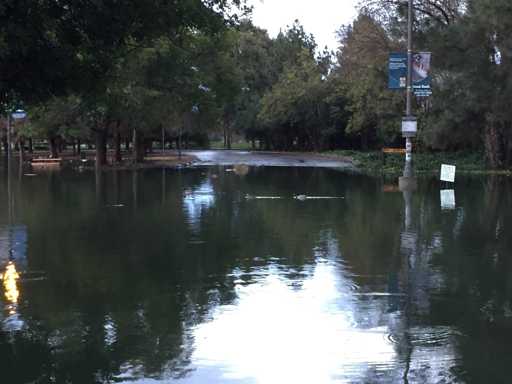 A pond at El Dorado Park in Long Beach overflowed into the parking lot on Monday, Jan. 23, 2017, during one of the strongest storms in years.
