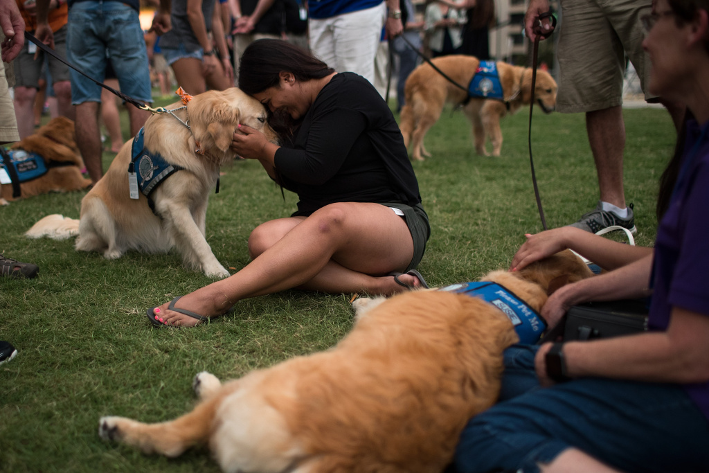 Melissa Soto cuddles with a therapy dog near a memorial for the victims of the Pulse Nightclub shooting, at the Dr. Phillips Center for Performing Arts, June 14, 2016 in Orlando, Florida.