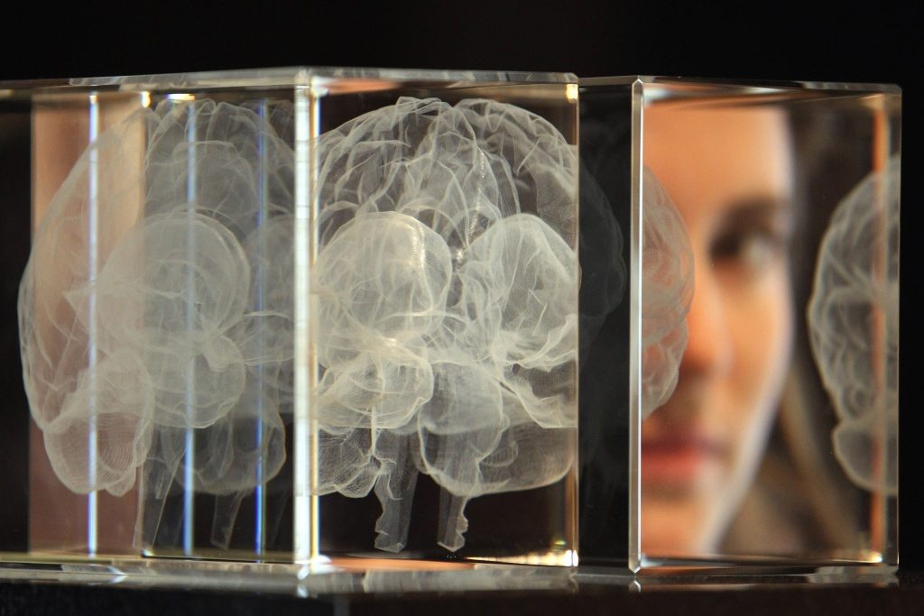 The research team led by the University of Tel Aviv's Daphna Joel has found male and female brains do not translate into differences in cognitive abilities.