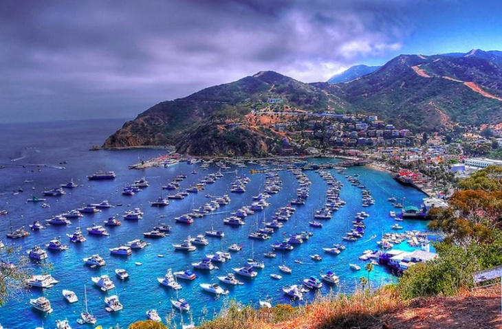 catalina boats