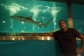 Shark handler Phillip Peters travels around the country with live sharks, and for your amusement, dives into his 5,000 gallon salt-water tank WITH HIS SHARKS for daily performances at the LA County Fair through September.