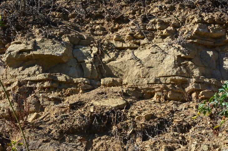 405 geology 8