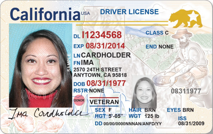 what to do if you lose your drivers license in florida