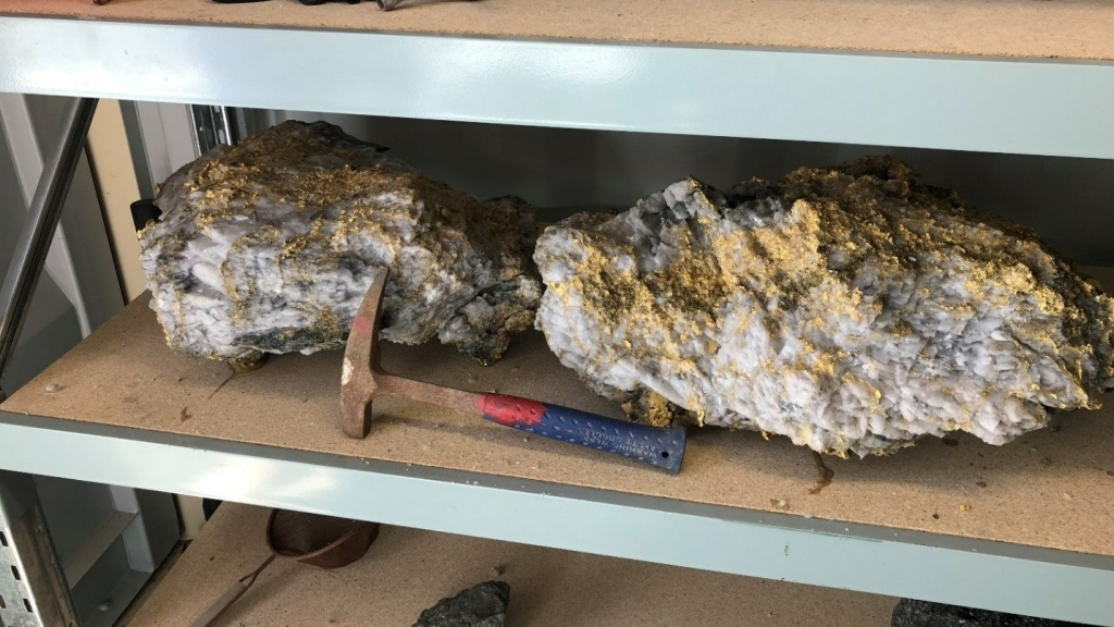 Two of the largest specimens containing gold recovered from the Beta Hunt Mine.