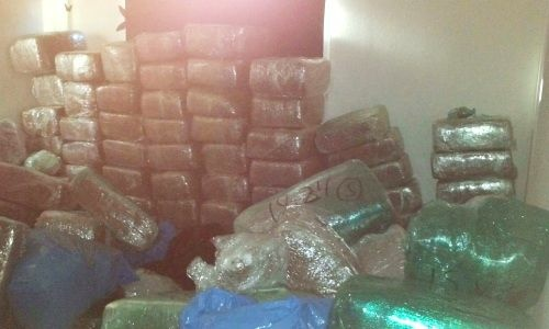 Deputies discovered over 2,000 pounds of marijuana after dousing a stovetop fire.