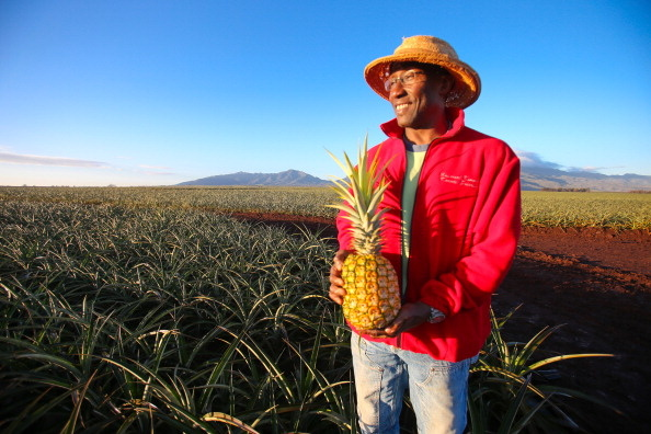Dole Food Company Inc. has evolved from a Hawaiian pineapple purveyor into the world's largest producer of fresh fruit and vegetables. Dole's board has accepted an offer from CEO David Murdock and his family are offering to buy the business and take it private.