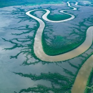 Brown with sediment loosed by seasonal rains, Australia's King River snakes through the coastal mudflats of the Kimberley, a remote northwestern region. In the dry months of May to September, the 76-mile meander lies bare.