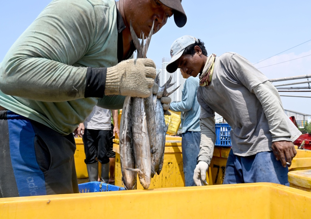 Indonesian fishermen unloading their catch at the port in Jakarta on May 5, 2019.