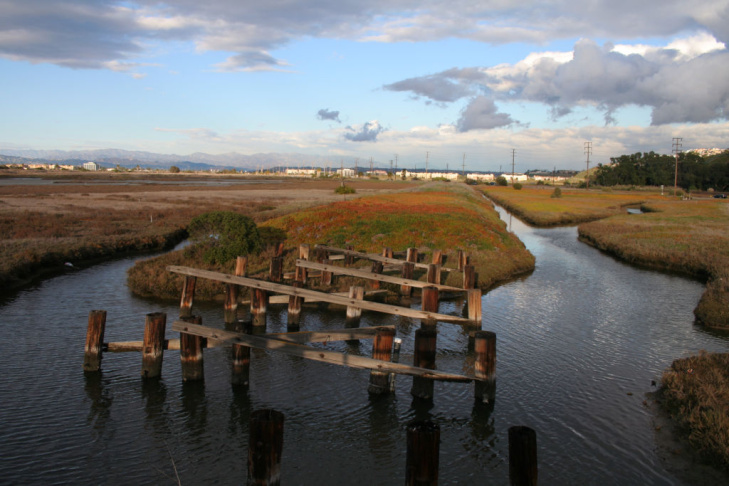 The Ballona Wetlands are protected by the state Department of Fish and Game and the U.S. Army Corps of Engineers.