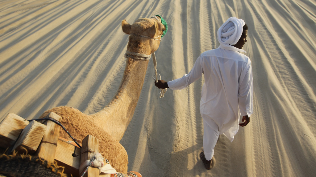The source? Signs of the Middle East respiratory syndrome virus have been detected in camels on the Arabian Peninsula. But it's still a mystery how people catch the disease.