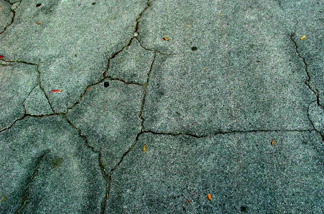 A picture of cracked pavement.