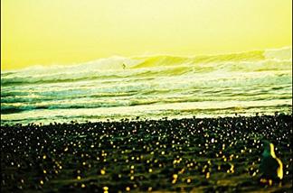 The dreamy world of surf photographer Maggie Marsek.