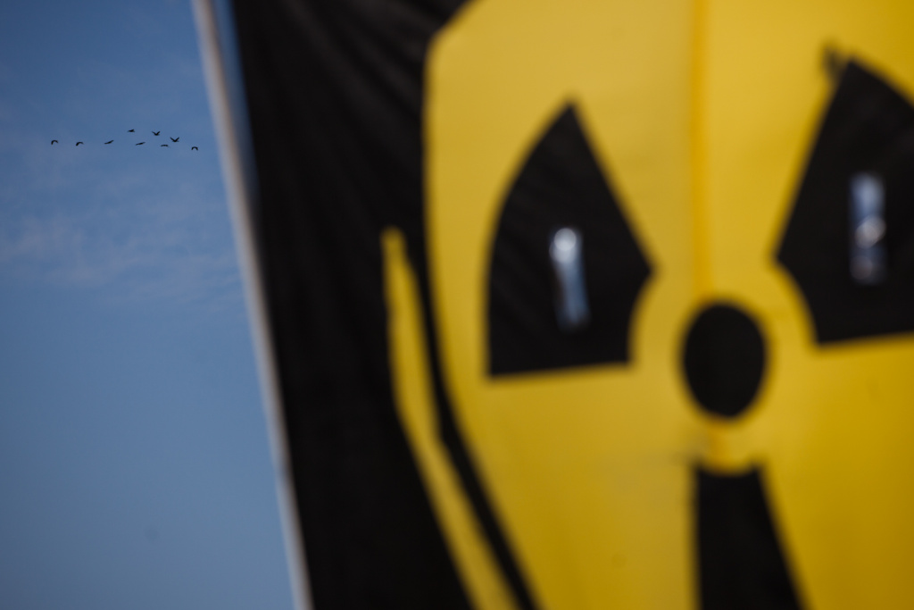 A flock of birds flies by a banner protesting nuclear power at San Onofre State Beach on April 6, 2012.